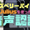 ラズベリーパイ3でJuliusを使って音声認識をする方法2017 RasPi 3B + Raspbian Jessi